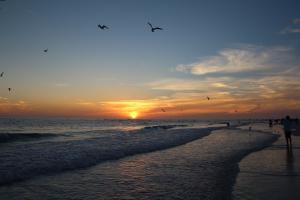Siesta Key Sarasota Sunset